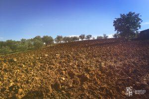 avventura-oliveto-piglio
